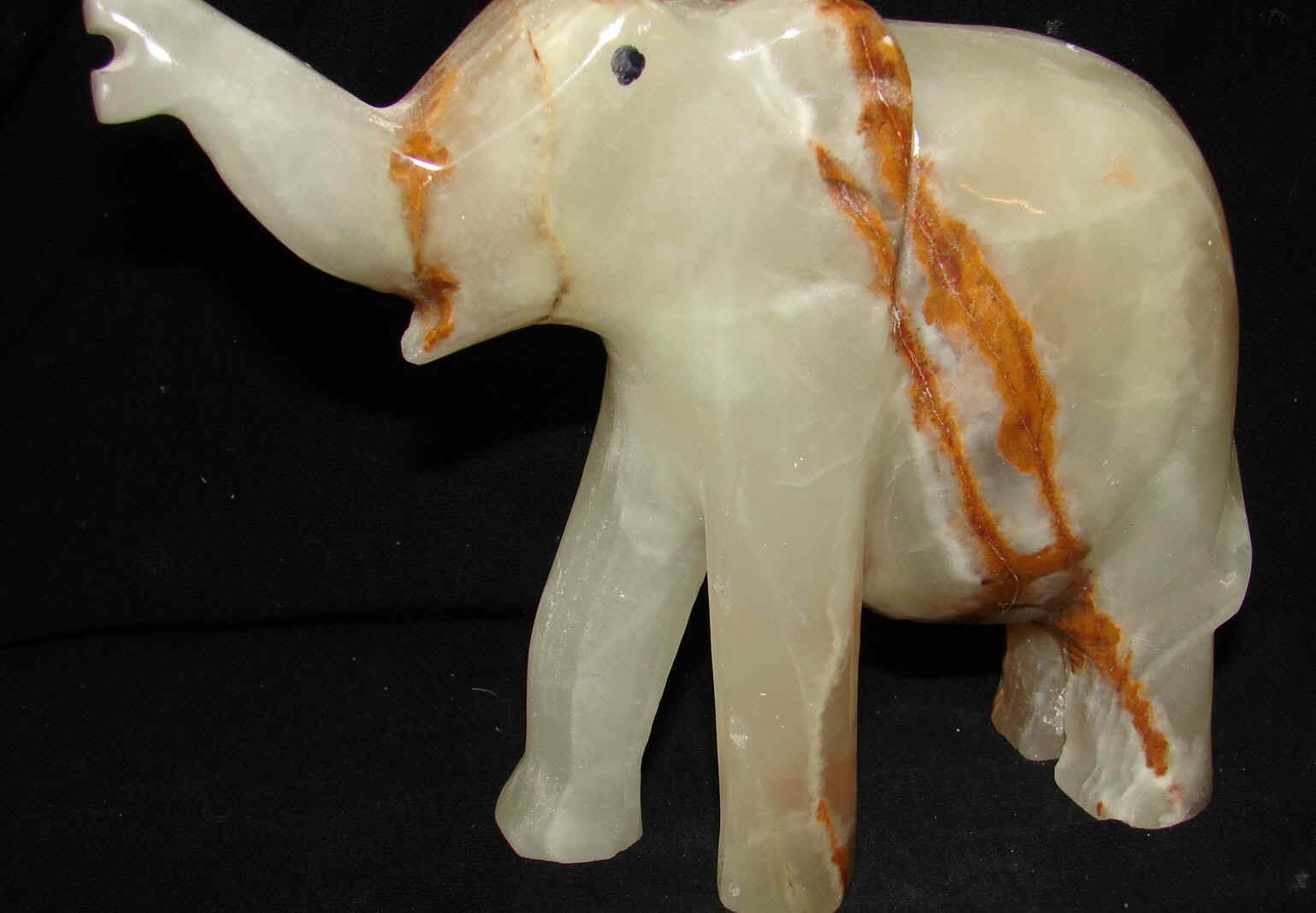 http://www.rockshops.net/elephant6-12.jpg (582341 bytes)